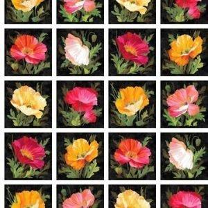 Panel multicolor de expressions Northcott
