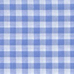 Tela de cuadros grandes azules y blancos de 1 cm (1,50)