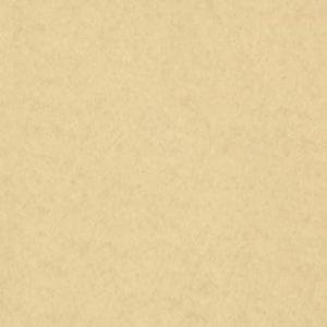 Fieltro gris (90x50 cm)