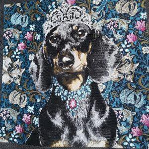 Perro sobre azul en cuadro de loneta de 49x49cm