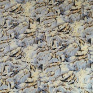 Tela de hierbas secas en otoño de Quilting treasures