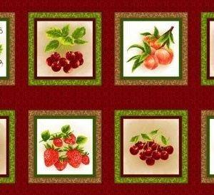 Panel de frutas variadas en cuadros